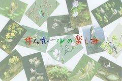 木部一樹作品展 サムホールの楽しみ [ 2017年10月25日~2017年10月30日 ]